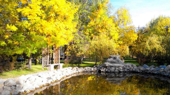 Фото №20 - 10 мест в Астрахани, где осенью – настоящая сказка!