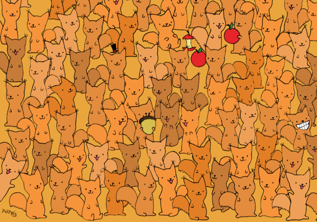 Фото №1 - Тест на зоркость: найди мышку среди бельчат