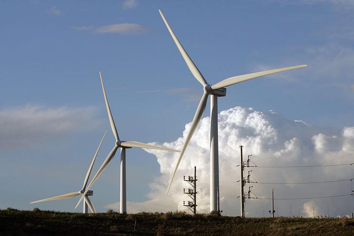 Фото №1 - Северные страны могут остаться без энергии ветра