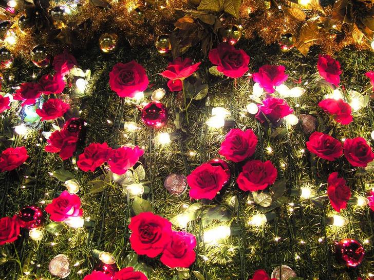 Фото №4 - 5 способов оригинально украсить елку