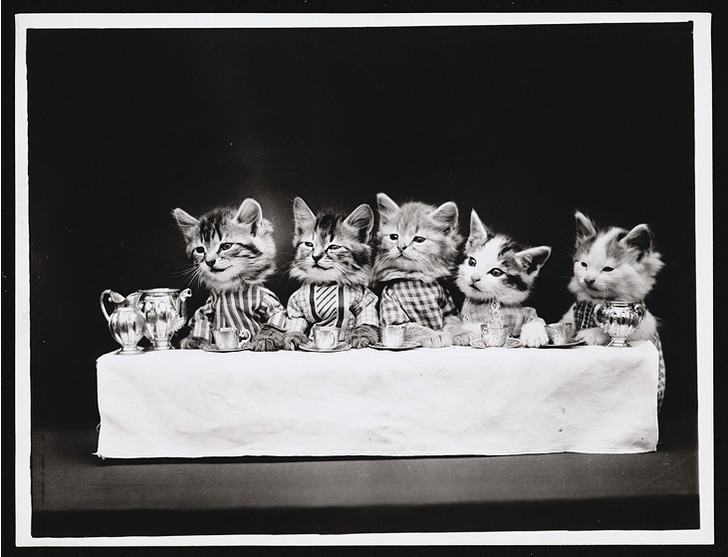 Фото №2 - Живые куклы