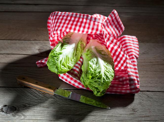 Фото №10 - 10 видов зеленого салата и 6 потрясающе простых рецептов с ним