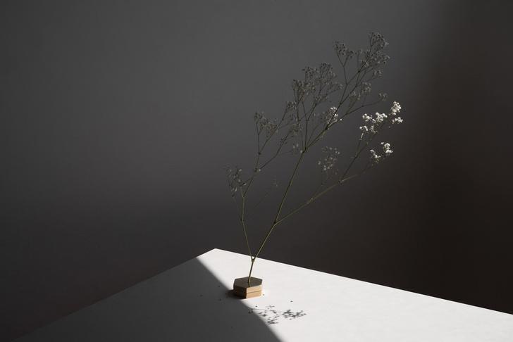 Фото №6 - No Vases: вазы без ваз