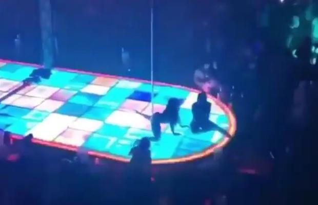 Фото №1 - Танцовщица упала с высоты 4,5 метра, но продолжила выступление (видео)