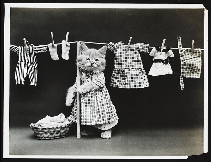 Фото №7 - Живые куклы