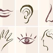 Кто вы: визуал, аудиал или кинестетик?