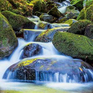 Фото №1 - Почему вода течет?