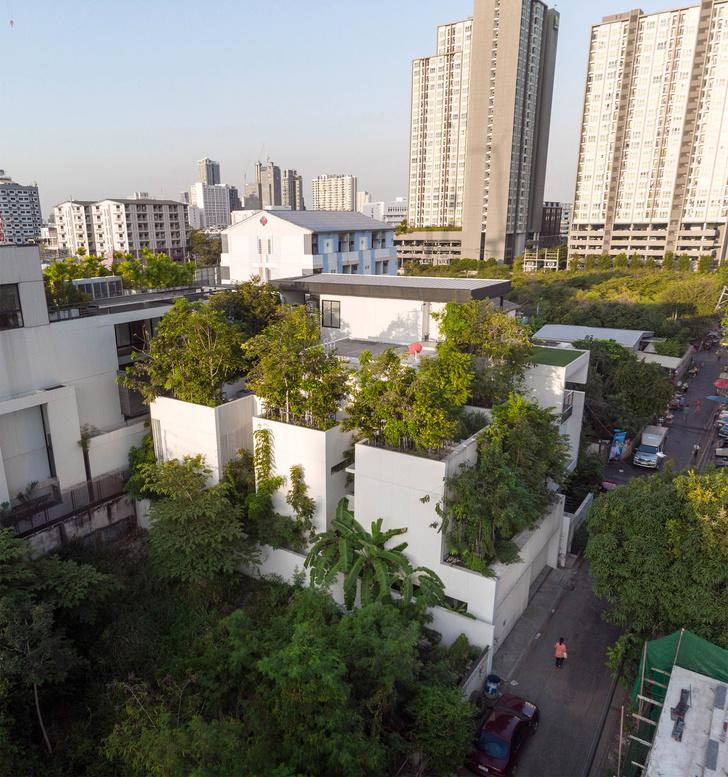 Фото №1 - Экодом в Бангкоке по проекту студии Shma Company