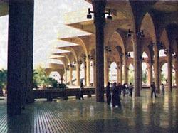 Фото №7 - Пуритане ислама