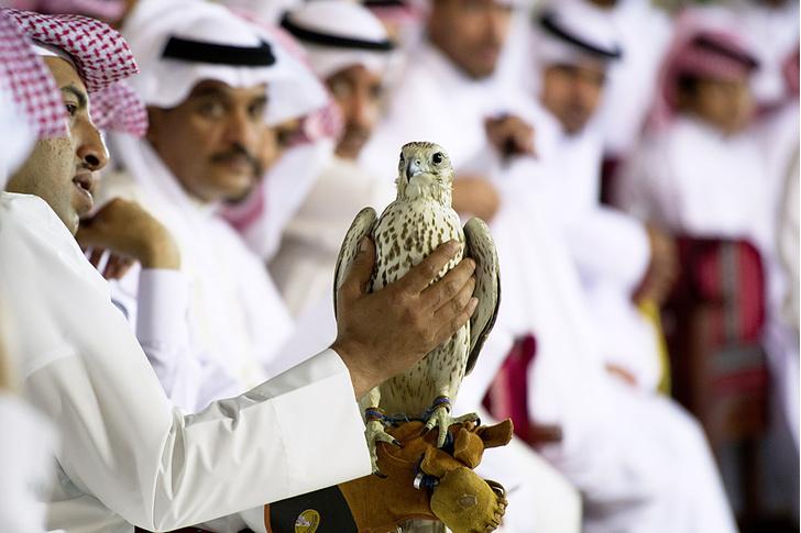 Фото №8 - Катар: настоящее будущее