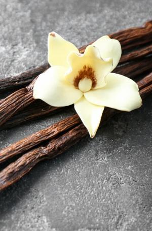 Фото №6 - Карамель, ваниль, горячий шоколад: 8 сладких парфюмов, перед которыми не устоять