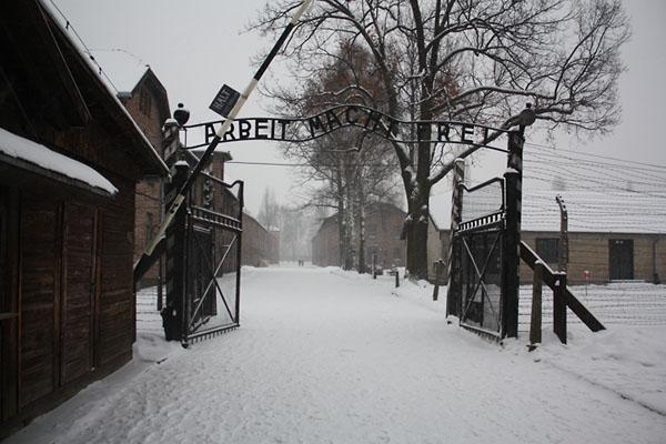 Фото №1 - Общежитие смерти на польской земле