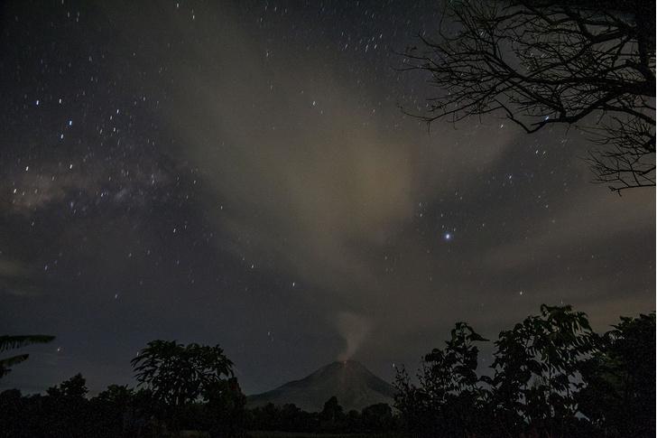 Фото №1 - Ночной Синабунг