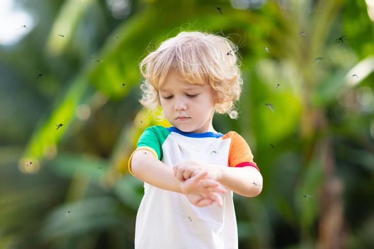 Фото №1 - Ребенка покусали комары и мошки: как снять зуд, отек и боль