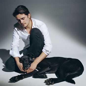 Орландо Блум терпеть не может свиней, зато обожает собак.