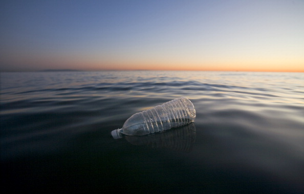 Фото №1 - Ученые предположили существование перерабатывающих пластик бактерий