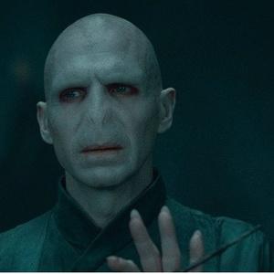 Фото №6 - Топ-10 самых могущественных палочек из вселенной «Гарри Поттера»