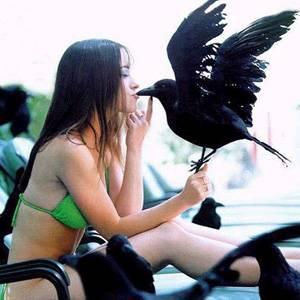 Фото №1 - Птичий грипп смягчает хватку