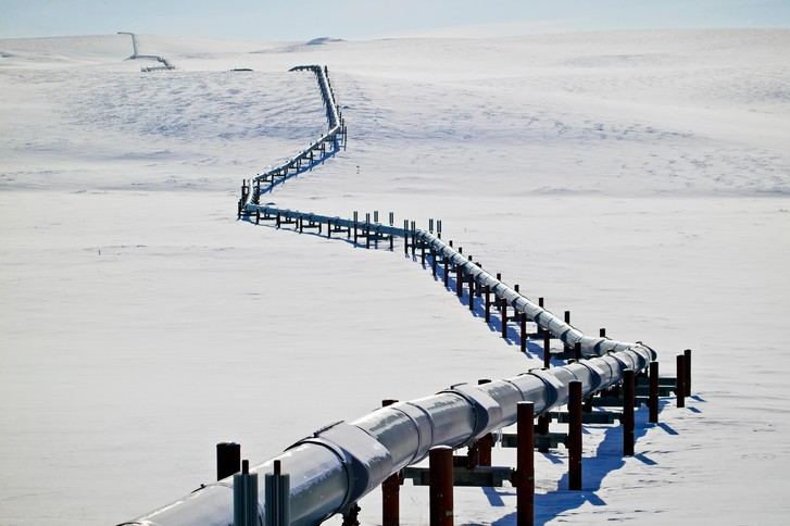 Фото №1 - В Арктике нашли бактерии, которые разлагают солярку и нефть