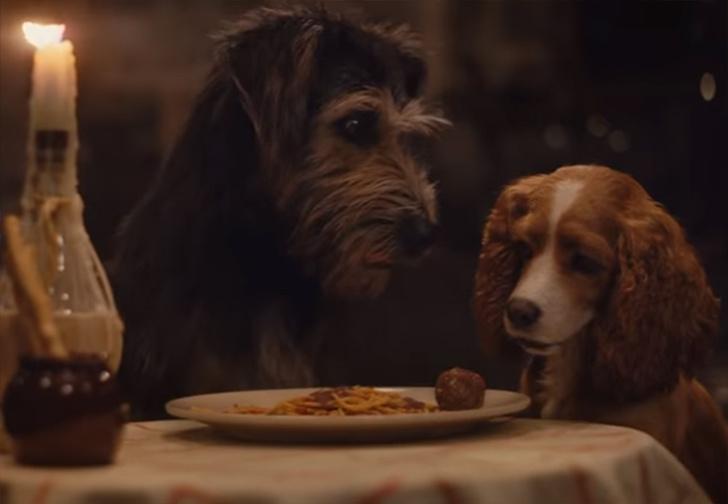 Фото №1 - Disney показал новый трейлер фильма по культовому мультику «Леди и Бродяга» (видео)