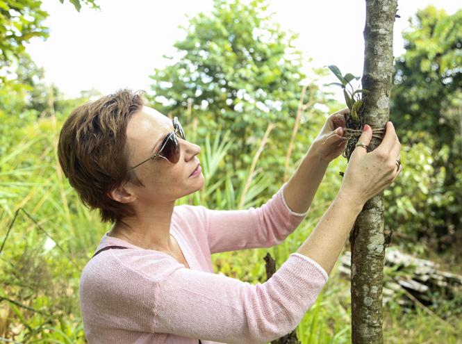 Фото №1 - Жизнь растений: как создается легендарный уход Guerlain