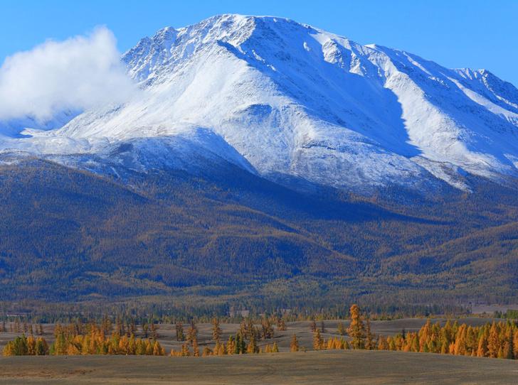 Фото №2 - Как восполнить энергию и красоту в горах Алтая