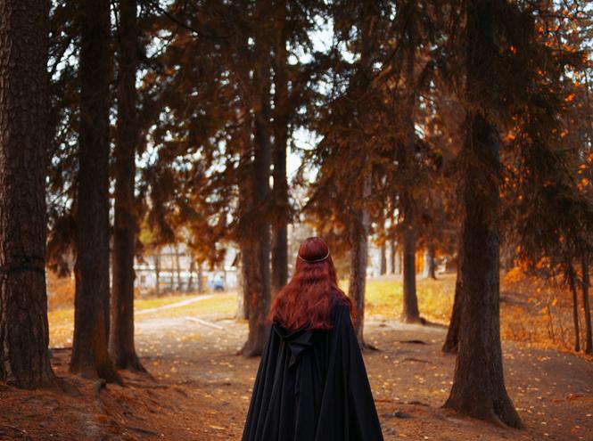 Фото №5 - Кто такие друиды и какое вы дерево