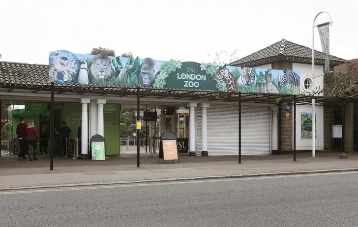 Фото №2 - По следам «101 далматинца»: мини-гид по Лондону и окрестностям