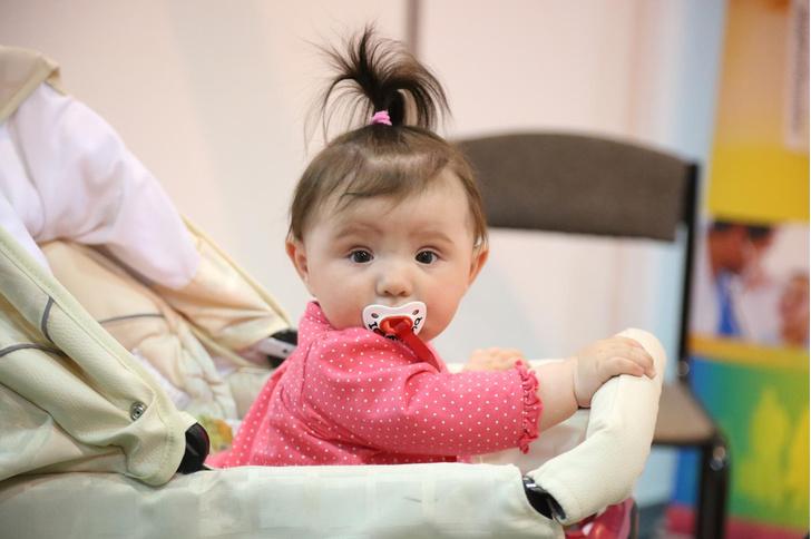 Фото №1 - В Сокольниках прошел фестиваль беременных и младенцев
