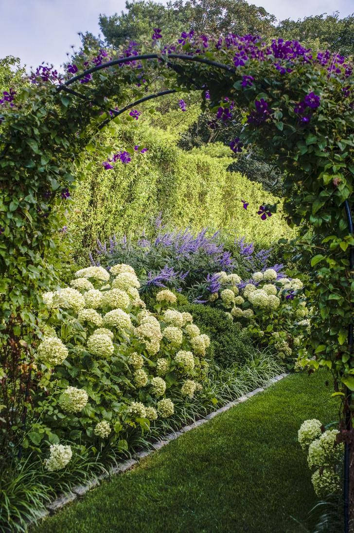 Фото №3 - Типичные ошибки в саду: советы дизайнеров