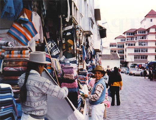 Фото №1 - Эквадорская панама