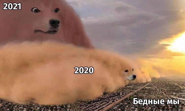 Фото №1 - Лучшие мемы про то, что ждать от 2021 года