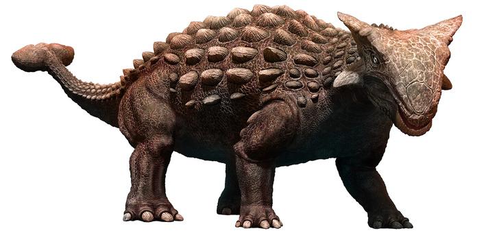 Фото №5 - 7 фактов о динозаврах, которые не знает даже Стивен Спилберг