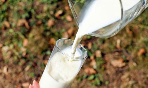 Фото №1 - В Роскачестве рассказали, нужно ли менять коровье молоко на растительное