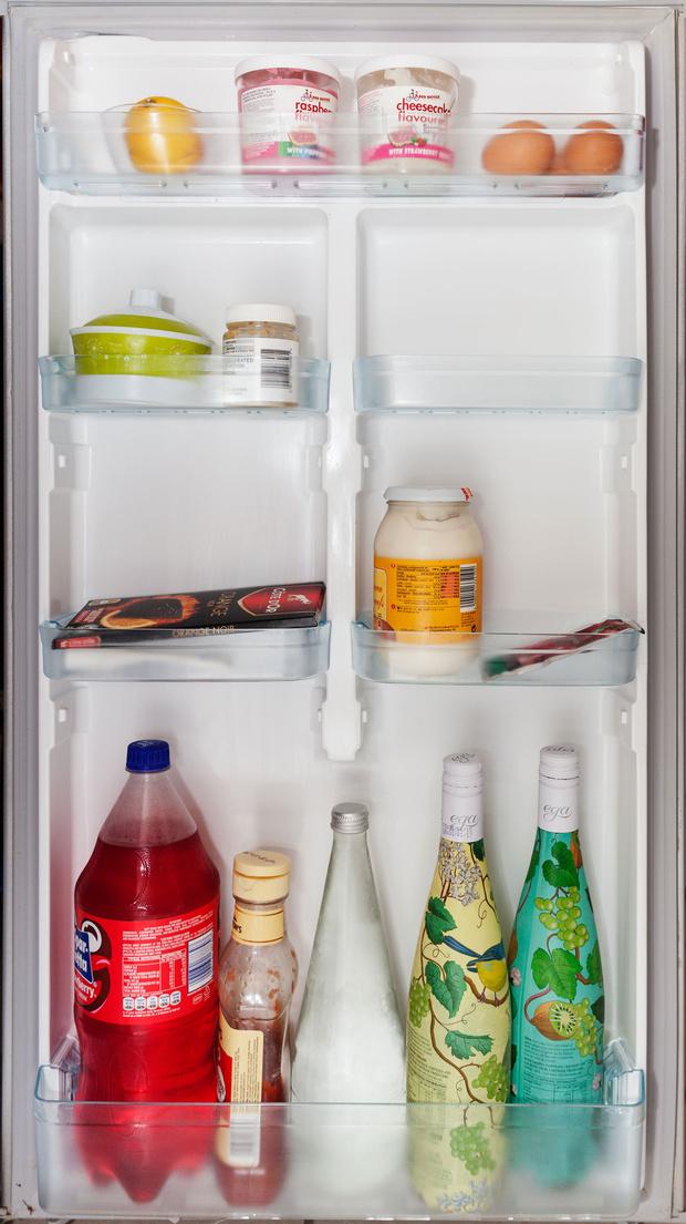 Фото №63 - Что лежит в холодильнике у жителей разных стран: 54 любознательных фото