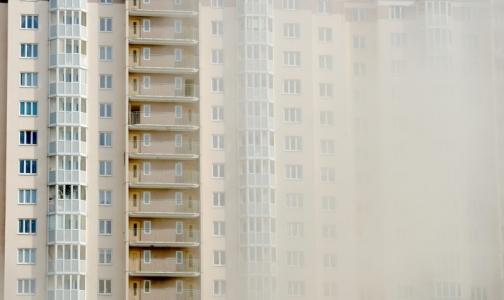 Фото №1 - Главный пульмонолог Петербурга рассказала, как спасаться от пыльных бурь