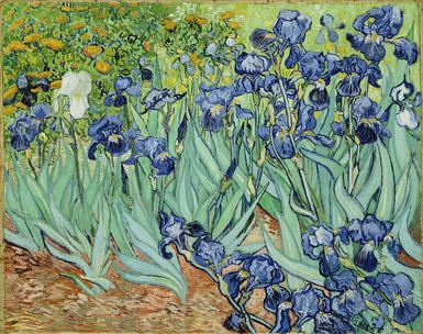 Фото №5 - Тест: Выбери картину Ван Гога и узнай, какого цвета твоя душа