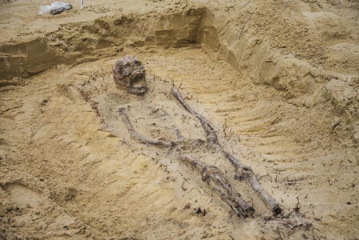 Фото №1 - В Польше обнаружено массовое детское захоронение XVI века