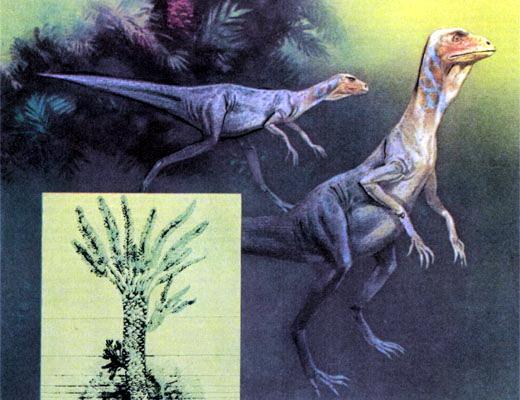Фото №1 - Как динозавры подарили нам...