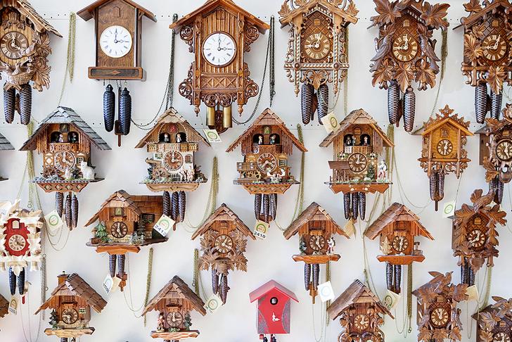 Фото №5 - Рабочий момент: Гнездо кукушки