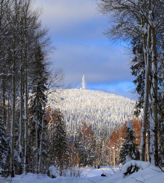 Фото №6 - По миру снежной теплоты
