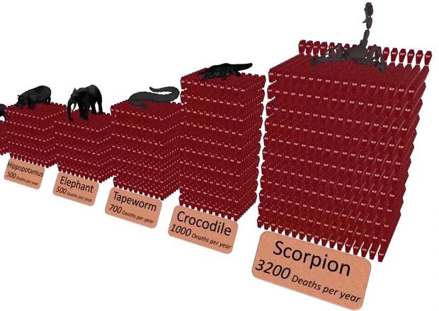 Фото №1 - Сколько людей какие животные убивают за год (анимированная статистика)