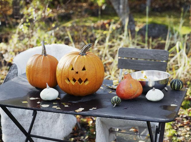Фото №7 - Королева Хэллоуина: 7 интересных фактов и 3 полезных рецепта из тыквы