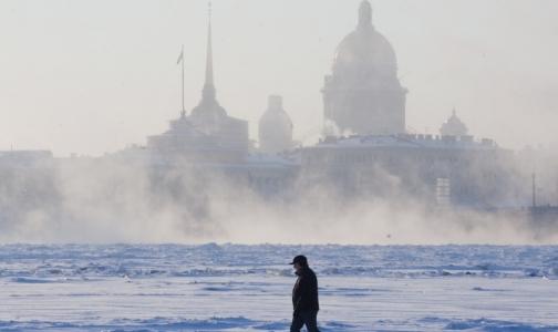 Фото №1 - Медики помогут экологам оценить риски для здоровья петербуржцев