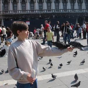 Фото №1 - Венеция лишится одного из своих символов