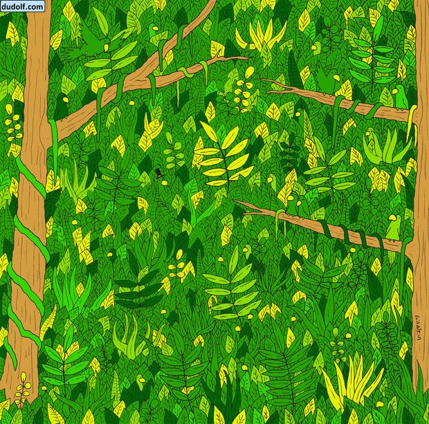 Фото №1 - Специальная летняя головоломка: найди ма-а-аленькую змею на этой картинке