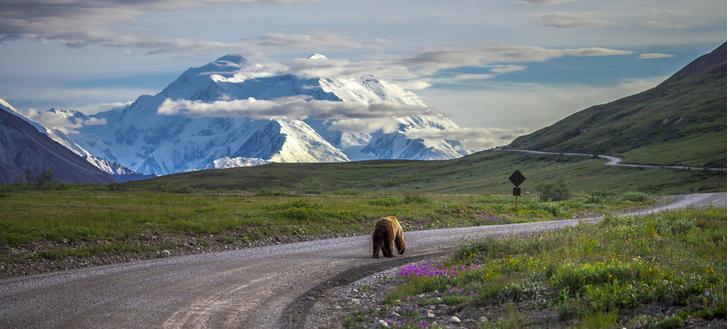 Фото №11 - Впадая в крайности: 10 самых необычных национальных парков на планете
