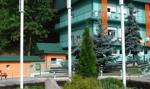 Фото №1 - В Сербии «хоронят» рассеянный склероз
