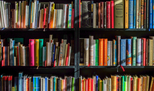 Фото №1 - Врачи добились приостановки продажи книг для антипрививочников