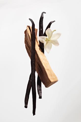 Фото №5 - Сладкая роза: аромат Nina Ricci Rose Extase